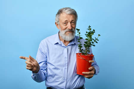 handsome man with flower in his hands pointing at somewhere, copy space. close up portrait, isolated light blue background. house flower. Фото со стока