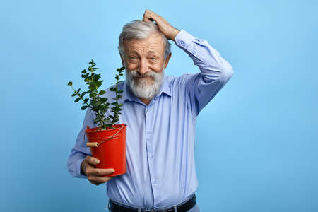 puzzled funny old man with flower in hands scratching his hair while posing to the camera. close up photo.man is thinking about to present flower for his wife on her birthday