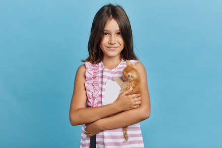 little brunette girl loves her cat, close up portrait, isolated blue background, studio shot, people