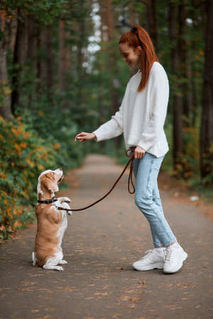 kind charming girl gets pleasure from playing with nice pet, full length side view photo. positive feeling and emotion