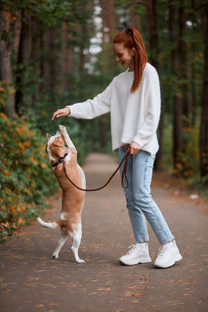 cheerful happy girl rejoicing at her dogs achievments. full length photo. friendship between people and animals, kindness