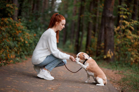 young beautiful woman feeding her pat, giving food for animal, full length side view photo 스톡 콘텐츠