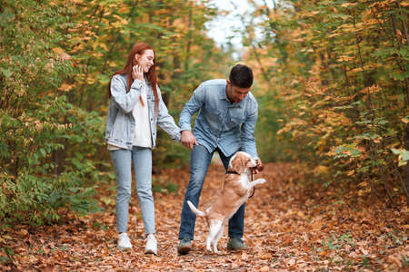 cheerful couple training their dog, teaching it to perform some activities, movement. full length photo, holiday with adorable pet