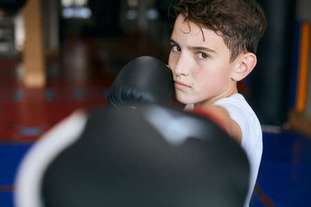 young boxer hitting the camera. close up cropped photo