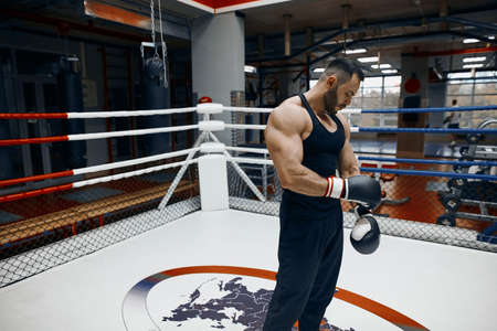 strong muscular boxer putting boxing gloves, getting ready for training, close up side view photo. lifestyle, free time, spare time Reklamní fotografie