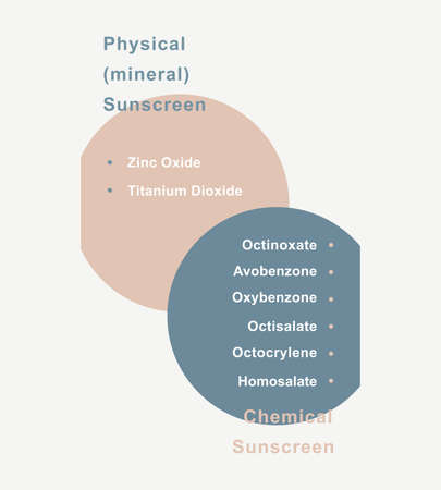 Infographic of ingredients in sunscreen. Physical and chemical ingredients. Vector illustration.