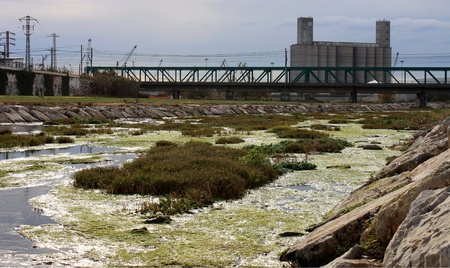 polluted river: A river polluted with waste from a nearby factory.