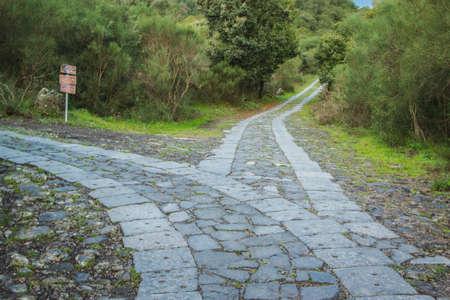道のフォークに導きます。どちらを選ぶか。