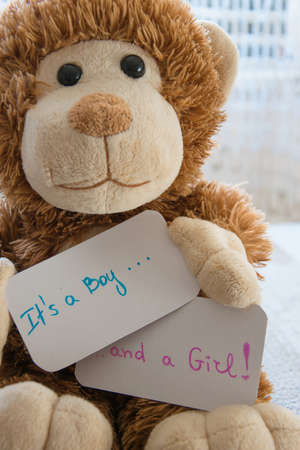Baby shower Its a boy ... and a girl. Teddy bear holds an announcement card for twins