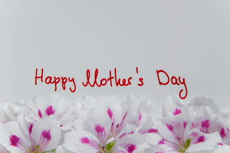 Fresh greeting card for the Mothers day, space for text