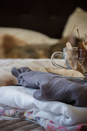 Cozy indoor autumn mood, female clothes folded on the bed with a coffee mug full of autumn leaves on it, and a sleeping cat in the background Banco de Imagens