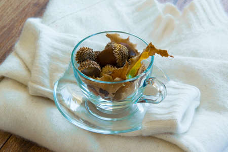 Tea cup with acorns on a white cozy woolen sweater, autumn-winter season concept
