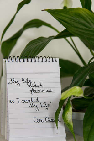 Coco Chanel quotes written on a block note and potted houseplant, inspiration phrase
