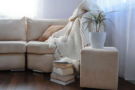 Stylish brightly interior of living room. Inviting comfortable sofa with handmade woolen blanket, books and potted plant. Comfortable place for reading or relaxing in Scandinavian style Stockfoto