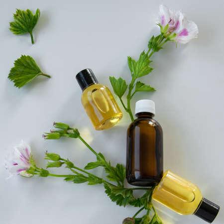 Frascos con aceite esencial de geranio. Productos de tratamiento cosmético a base de hierbas Foto de archivo