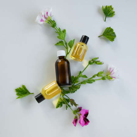 Bottles with geranium essential oil. Herbal cosmetic treatment products