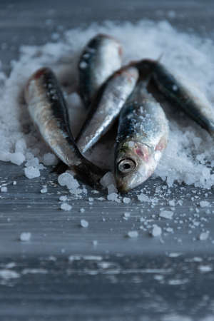 Preparing anchovies in salt. Healthy raw seafood