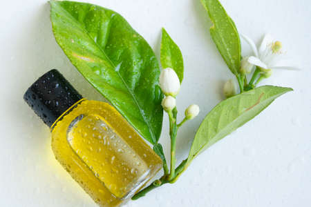 Essential oil with orange flowers. Hygiene bath product. Wellness therapy regeneration