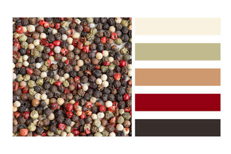 Mix of pepper seeds in a colour palette, with complimentary colour swatches