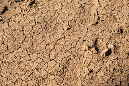 Texture dry cracked soil background pattern of drought lack of water