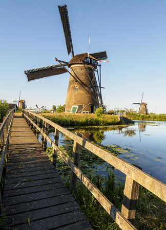 A windmill on the bank of a canal with reeds in Kinderdijk, Netherlands 版權商用圖片