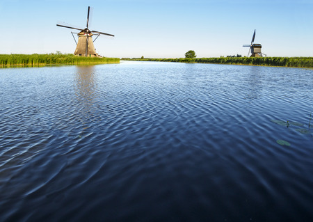 A windmill on the bank of a canal with reeds in Kinderdijk, Netherlands Stockfoto