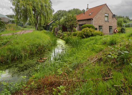 Beautiful house by the river or canal in the woods and reeds overcast in the Dutch town of Vlaardingen (Rotterdam, The Netherlands)