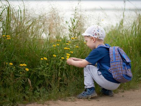 A little boy in summer clothes with a backpack and a cap crouched and looks at wildflowers. Archivio Fotografico
