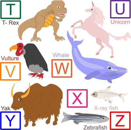 Alfabeto de animales, parte 4 de 4 Foto de archivo - 4262201