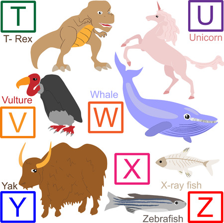 Animal alphabet, part 4 of 4 Vector