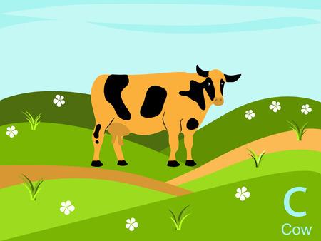 Animal alphabet flash card, C for cow Vector