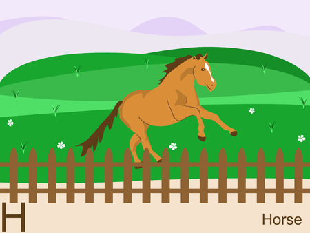 Animal alphabet flash card, H for horse Vector