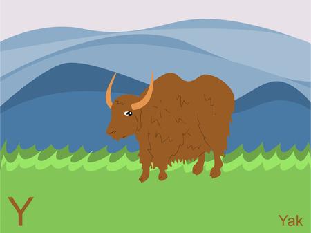 Animal alphabet flash card, Y for yak Vector