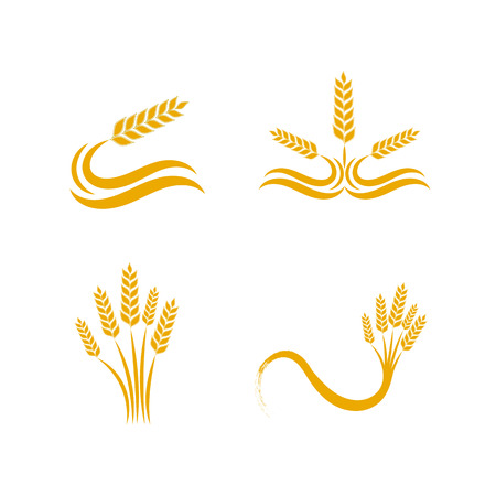 Set of Simple wheat like ornaments design illustration for bakery