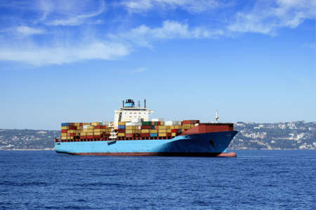 Container ship anchored photo