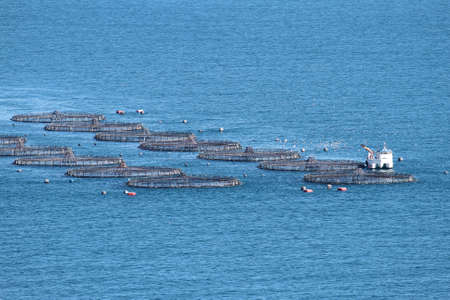 profundity: Fish farm and fishing boat working Stock Photo