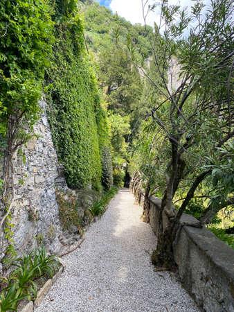 Botanical garden in the city of Varenna, Italy. A picturesque place in the mountains. The park. Giardino Botanico Di Villa Cipressi. Tourism Stock Photo