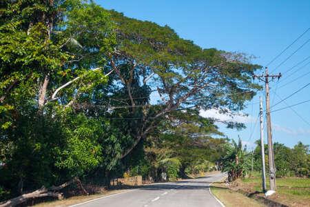 bohol: Country road. Bohol, Philippine