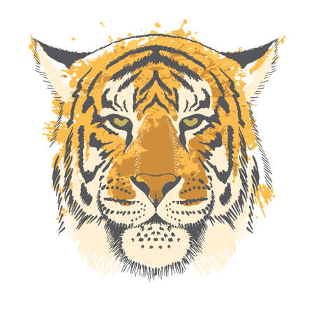 Tiger freehand drawing on a background of watercolor splashes. Greeting card for New Year of the Tiger 2022, Illustration for printing on T-shirts, textiles and souvenirs.