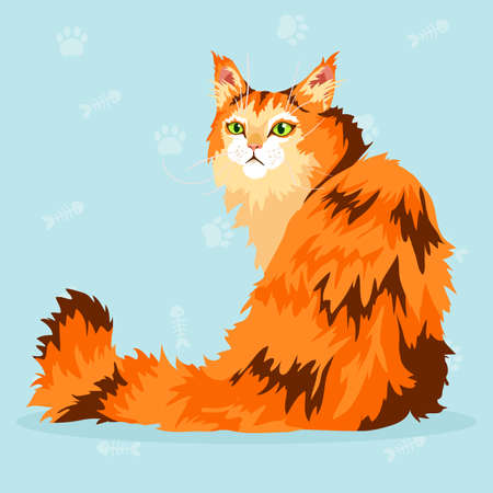 A beautiful Maine Coon with orange, red and brown fur and green eyes sitting Vector illustration. Illustration