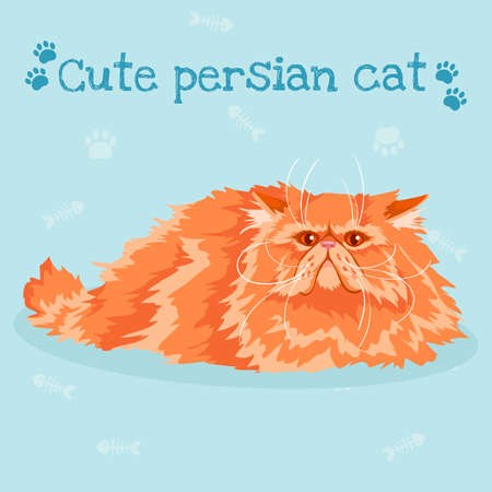 Persian cat Vector illustration on blue background.