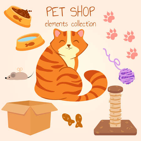 Happy red-haired fat cat sitting and smiling. Pet shop poster design with many accessories. Vector illustration.