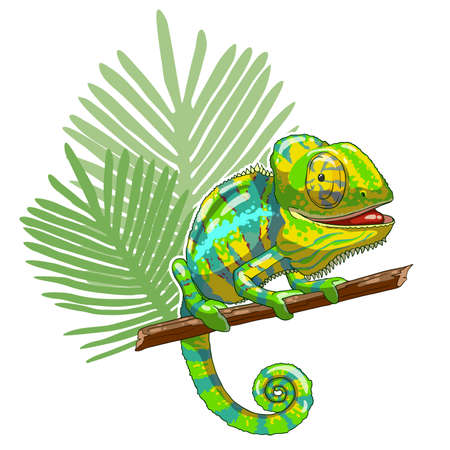 Green cartoon chameleon is sitting on branch and looking. Thoughtful and lazy wild life. Reptile on a white background. Vector illustration. Can be used for fashion print design. 일러스트