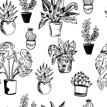 Vector seamless pattern with house plants in pots in black and white colors. Perfect for textile, wrapping, web. Banque d'images