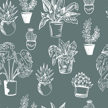 Vector seamless pattern with house plants in pots in black and white colors. Perfect for textile, wrapping, web. Illustration