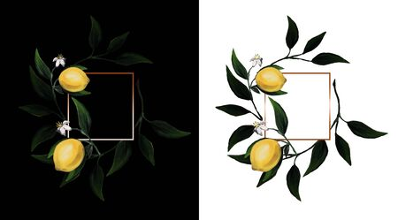 Set of frames with lemons and leaves with light gold squared frame on black and white backgrounds. Branch with lemon. Perfect for wedding invitation. Banque d'images - 146684960
