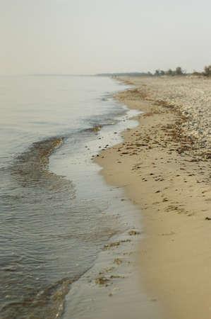 Sea wave propagation along the sand beach