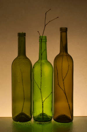 outumn: Composition with empty wine bottles and branches Stock Photo