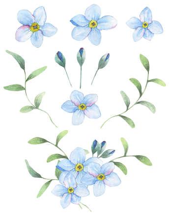 Foget-me-not kwiaty malowane akwarelą. 9 wyizolowane obiekty + bouqet od tych elementów.