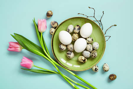 Chicken and quail easter eggs on the green plate decorated with branches and tulips, blue background Imagens